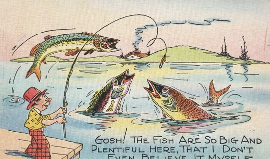 Vintage Used Postcard: Comic 1941 Fish are So Big Here