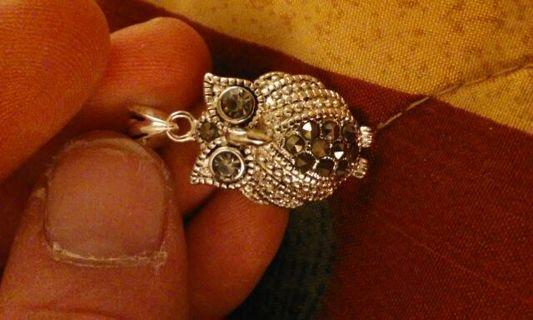 Beautiful Owl charm