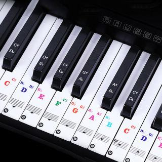 [GIN FOR FREE SHIPPING] For 37/49/88/61/54 Keys Piano Stickers Label Transparent Digital Keyboard