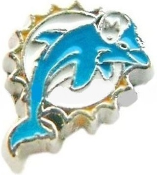 ⭐Miami Dolphins⭐ Living Locket Charm ☆VERIFIED USERS ONLY PLEASE☆