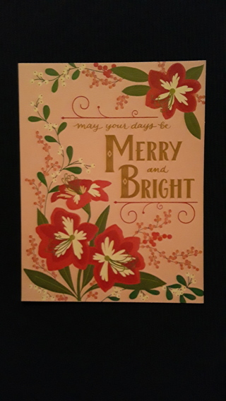 Holiday Delight Cards