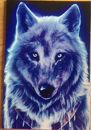 """WHITE WOLF - 3 x 5"""" MAGNET"""