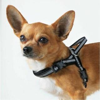 NWOTs IKEA LURVIG Black Reflective Dog Harness (XS/S)