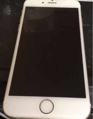 iPhone 6. PLEASE READ DESCRIPTION BEFORE BIDDING!!!! NO GIN