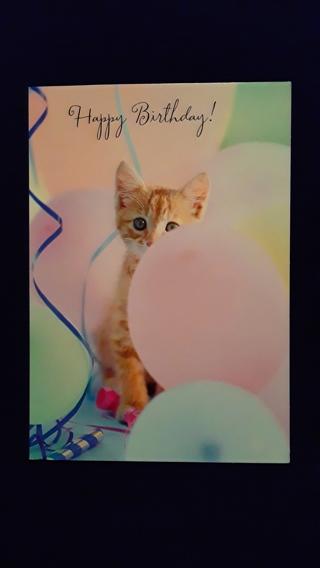 Happy Birthday Card - Balloon Kitten