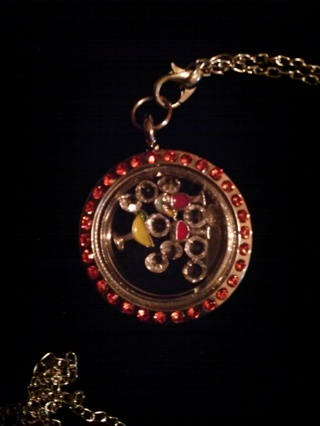 Fun Times Living Locket Necklace