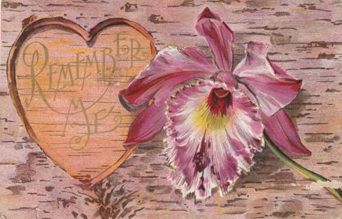 Vintage Used Postcard: Embossed: 1909 Remember Me