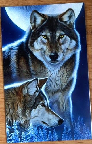 """Lunar Wolves -  3 x 5"""" MAGNET"""