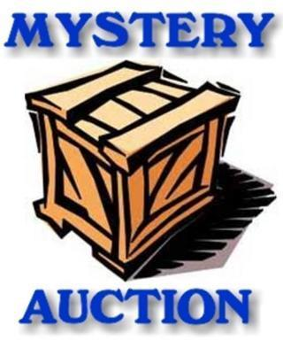 Mystery Auction (25 Books)