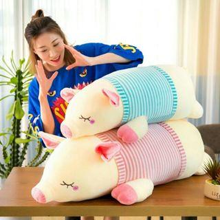 Two stuffed piggies