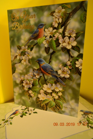 ****BEAUTIFUL BIRDS ON BRANCHES BIRTHDAY CARD W/MATCHING ENVELOPE***FREE SHIPPING