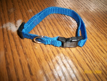 Pet collar for cat or small dog