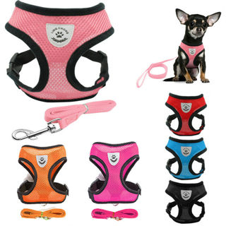 Small Dog Cat Pet Harness Leash Collars Puppy Vest