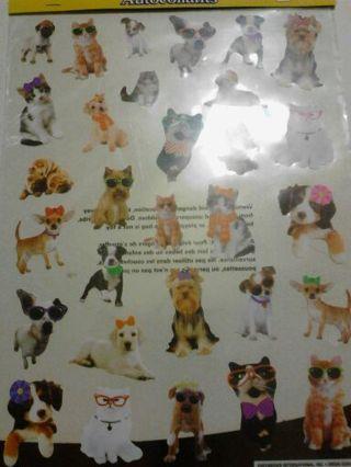 Cute dog n cat stickers