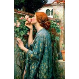 """John Wiliam Waterhouse""""The Soul of the Rose """"print with mat/ blank greeting card New Free ship"""