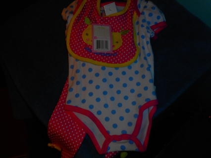3 pc Baby Girl Outfit ~ NWT