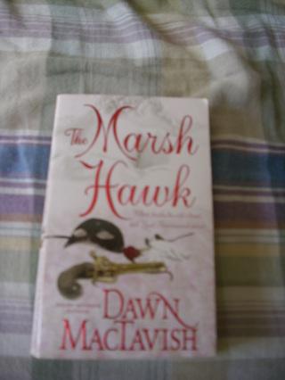 The Marsh Hawk by Dawn MacTavish