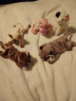 Beanie Babie Cats