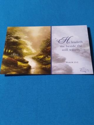 Get Well Card - Petals Of Hope