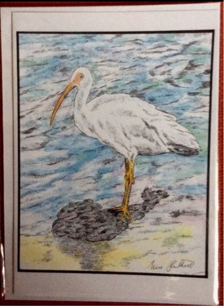 "WHITE IBIS - 5 x 7"" art card by artist Nina Struthers - GIN ONLY"