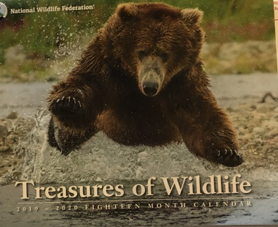 "Brand New Sept 2019 - Dec 2020 ""TREASURES OF WILDLIFE"" Wall Calendar. Free To Ship!"