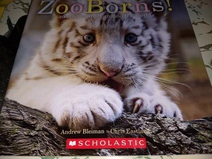 Zoo Borns! Zoo Babies from Around the World