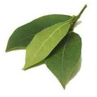 Bay Leaf WIshes