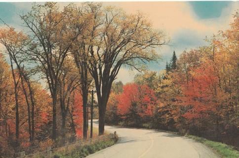 Vintage Unused Postcard: Sault Ste Marie, Ontario, Canada