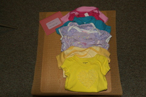 6fde469d889a7 Free  EUC Baby Girl Short-Sleeve 3 - 6 Month Old Onesies
