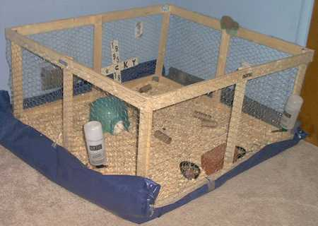 free build your own guinea pig rabbit cage other pet