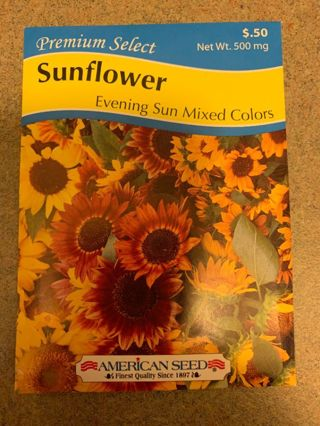 SUNFLOWER SEEDS-EVENING SUN MIXED COLORS-500 MG~LAST ONE!