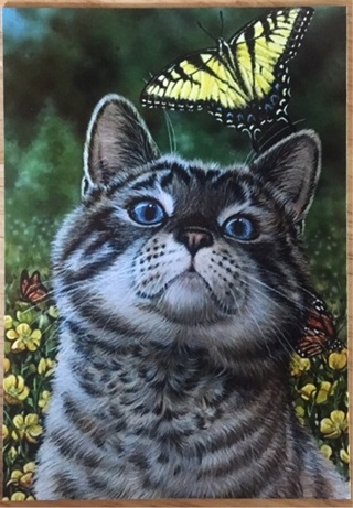"TABBY CAT WITH BUTTERFLY - 3 x 5"" MAGNET"