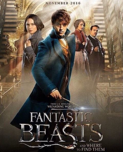 a review of the wizardry world in fantastic beasts and where to find them a movie by david yates