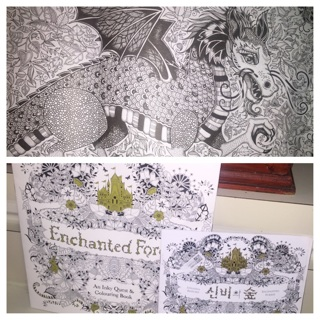 LOT OF 2 ENCHANTED FOREST ADULT COLORING BOOK OWLS DRAGONS TREES BIRDS MANDALAS JOHANNA