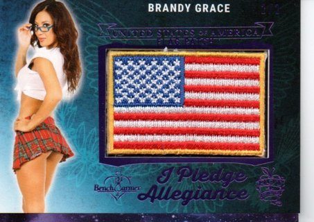 2018 Benchwarmer Brandy Grace Flag Patch 2/2