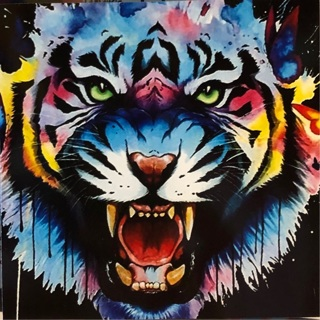 """TIGER!  - 3 x 3"""" MAGNET"""