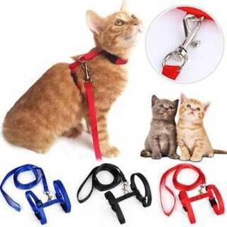 Nylon Cat Lead Belt Adjustable Pet Traction Harness Belt Cat Chest Harness Leash