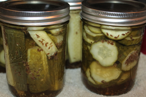 Homemade dill pickle recipe + 4 bonus recipes