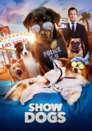 Show Dogs InstaWatch
