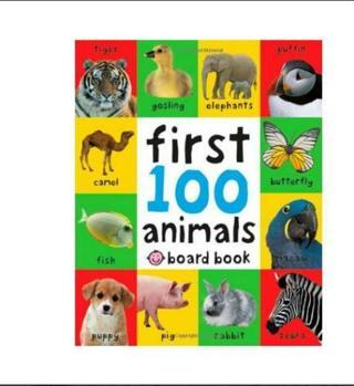 First 100 Animals Board book Brand New