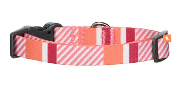 Bow & Arrow Colorful Stripe Adjustable Dog Collar