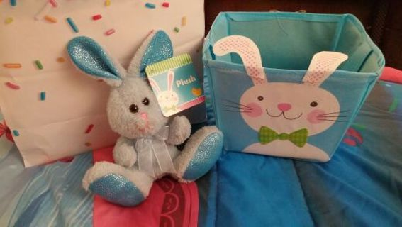 Baby boy semi mystery easter basket free shipping.as the bid goes up so does the items.