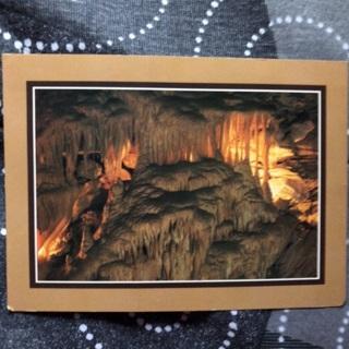 Golden Fleece Postcard