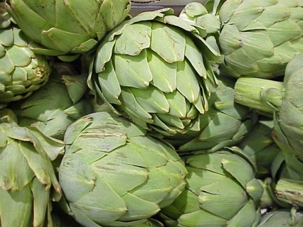Artichokes Organically Grown, Hand Harvseted - 20 Seeds