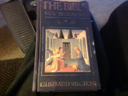 THE BIBLE NEW TESTAMENT- ILLUSTRATED SELECTIONS