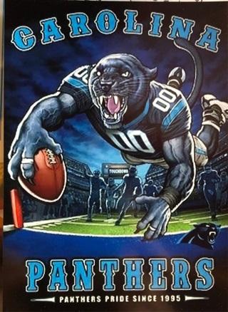 """Carolina Panthers NFL - 3 x 4"""" MAGNET"""
