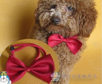 1 WHITE  Doggie Bow Tie Collar