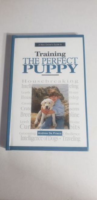 Training the perfect puppy
