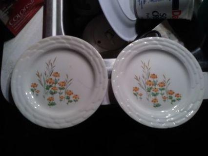 Set of 2 plates
