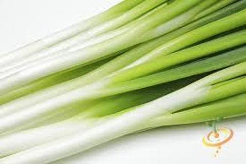 Bunching Onions, Tokyo Long White, 150+ seeds